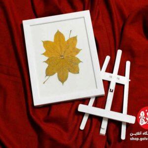 قاب پاییزی درخت افرا